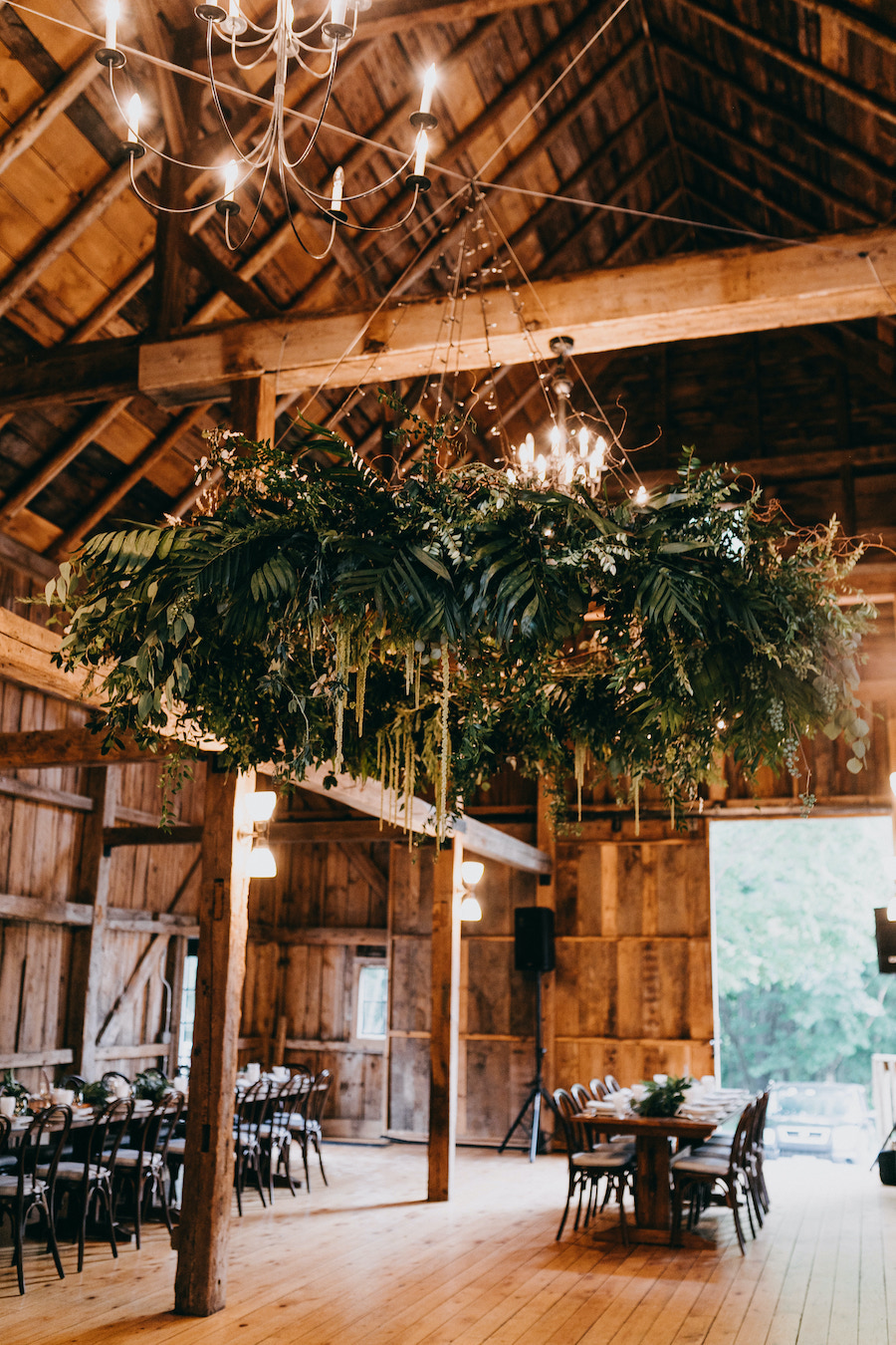 chandelier with lush green leaves and string lighting