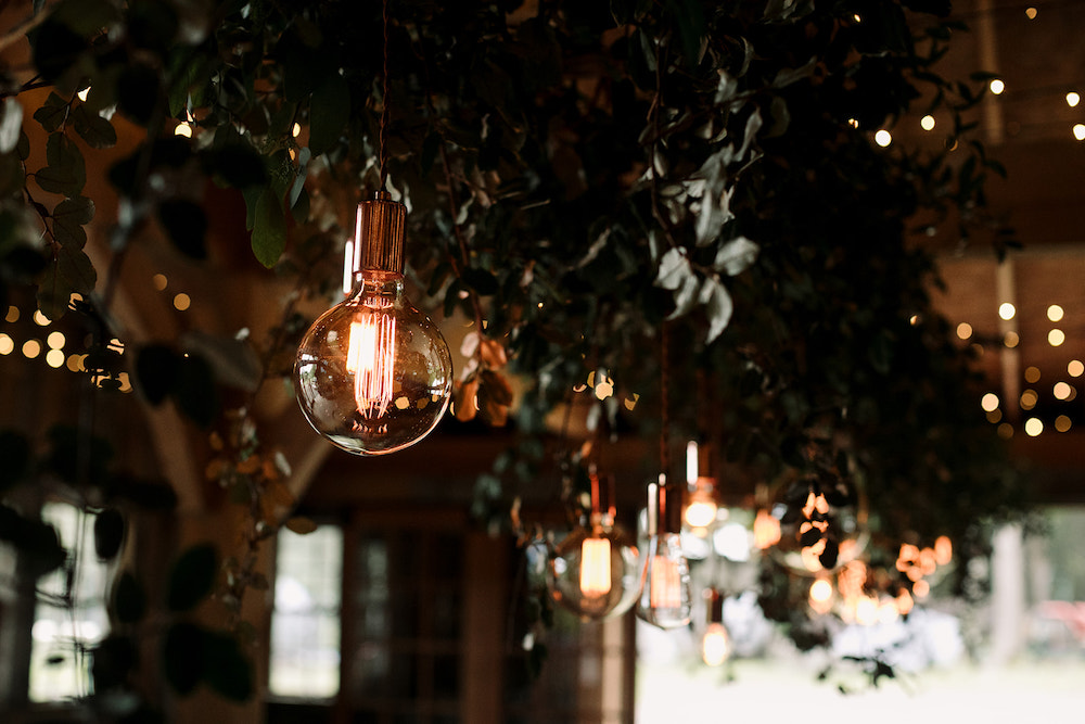 Bulbs hanging from lush greenery over tabletops.