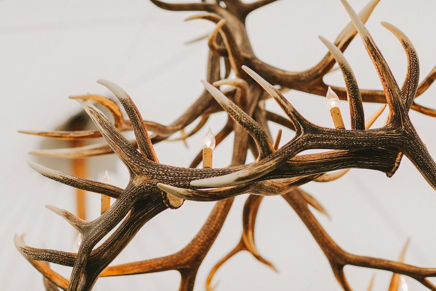 Deer antler chandelier suspended in tented celebration.